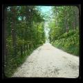 66 Bachie Road