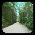 67 Bachie Road