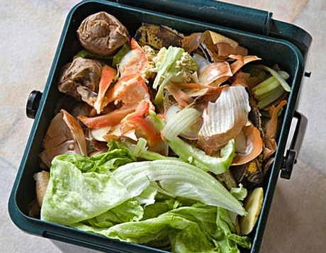 food_waste_recycling