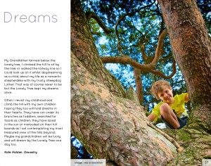 Lonely-Tree-book-13-p27