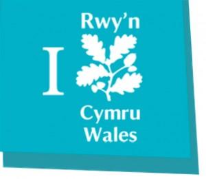 NT-logo-Rwy'n
