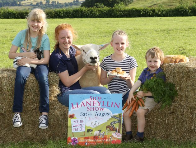 PB280-2017 Llanfyllin Show 2017 on Saturday 12th August pictured l-r Ella Evans (8) Grace Evans (13) Ruby Evans (10) and Tom Evans (2) Picture by Phil Blagg PB280-2017